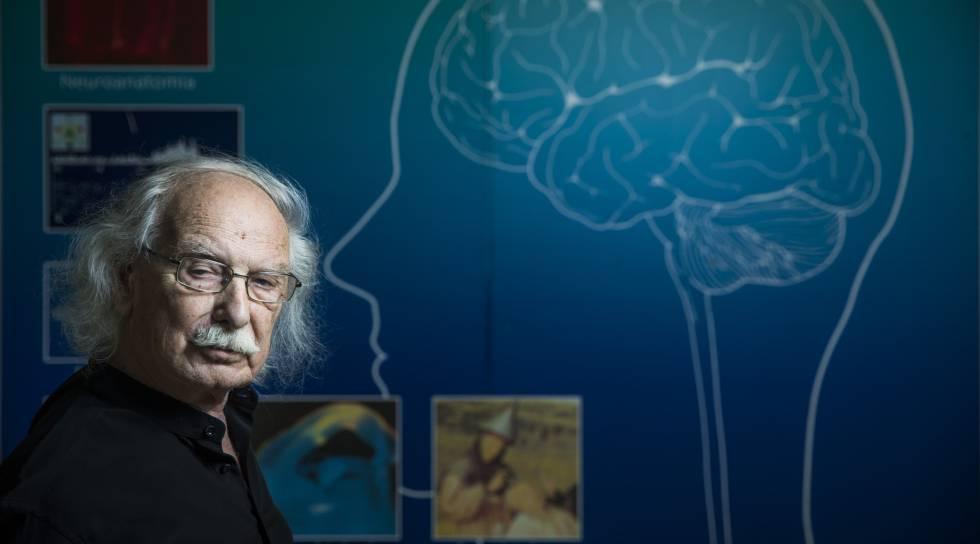 Las fronteras del cerebro y la inteligencia artificial