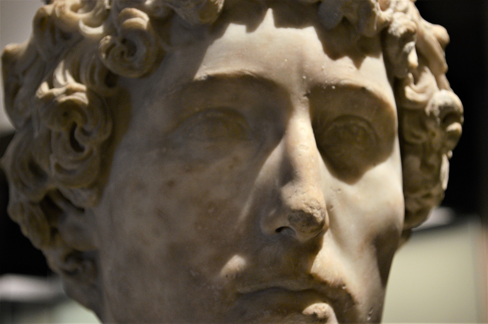 Busto de un joven romano Foto Ireli Vázquez